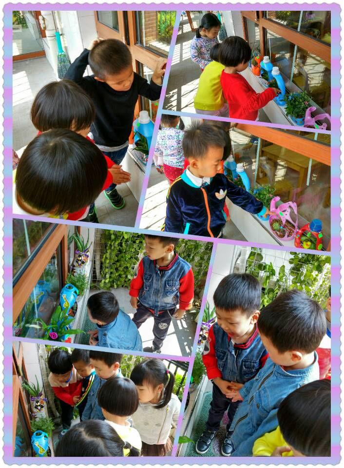 幼儿洗衣液桶做花盆